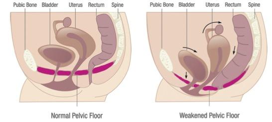 peed while having sex