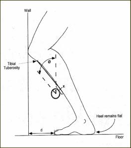 lunge-test4